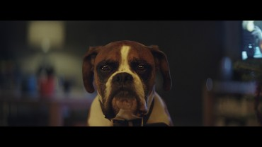 spot-natale-buster-the-boxer-john-lewis-christmas-ad-051